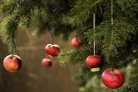 karácsonyi ág almaval